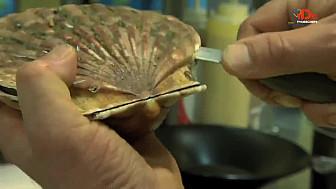Le chef Mickaël Auvage (restaurant Planète Océan) : Un produit... une assiette... La Saint-Jacques façon Côte d'Opale sur son lit de julienne. @TVdeschefs @Smartrezo