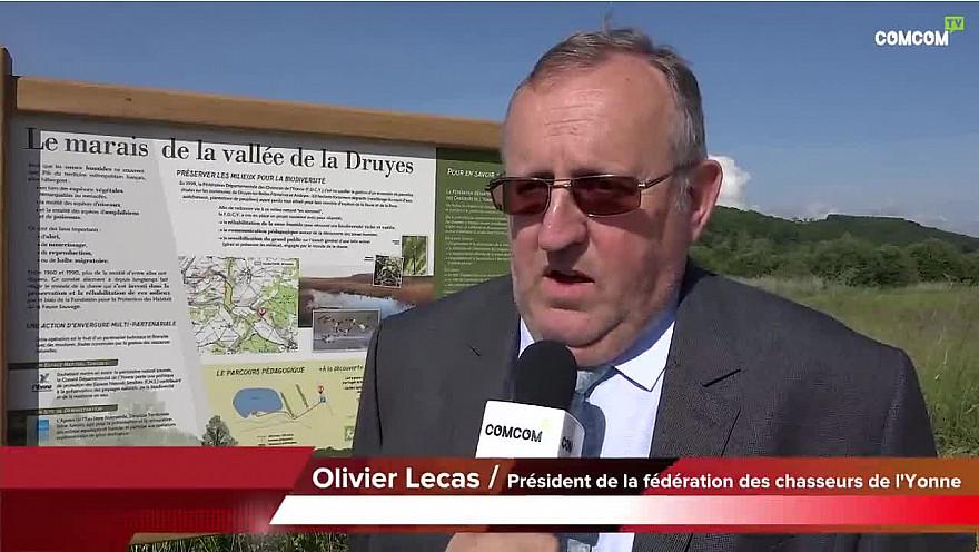 Andryes  » A la découverte des zones humides de la 'Vallée de la Druyes' dans l'Yonne