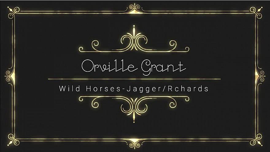 'Wild Horses' (Orville Grant Cover)